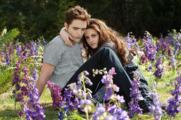 breaking_dawn26