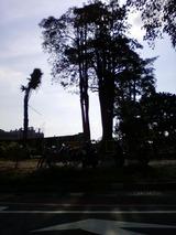 画像-0164
