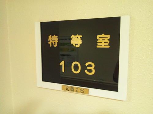 DSC_1002