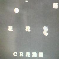 dbbe3d70.jpg