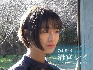 20190124_bltgrap39_movie_seimiyarei_eyecatch02