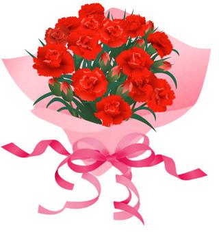 carnation06-001