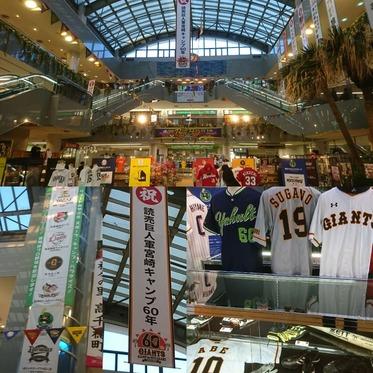 宮崎ブーゲンビリア空港の野球コーナー