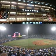 5年ぶりの神宮球場