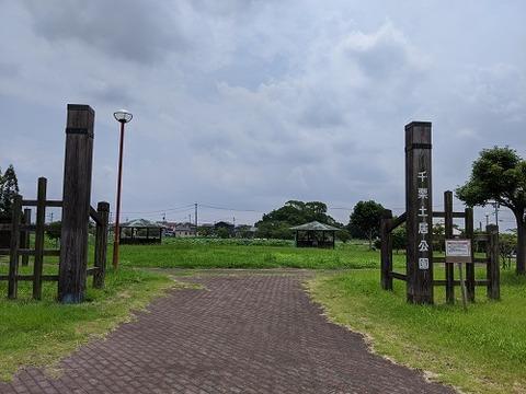 千栗土居公園20200628No44