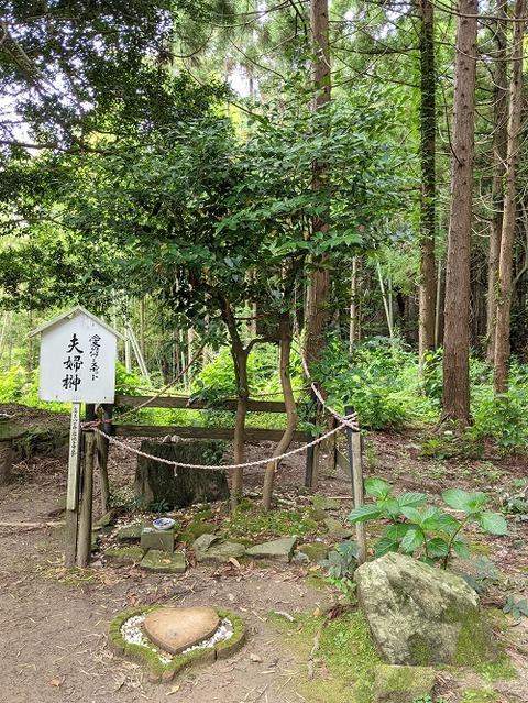 高良山2021612No28