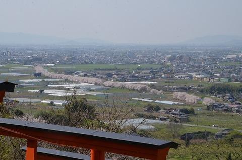 浮羽稲荷神社20200404No28