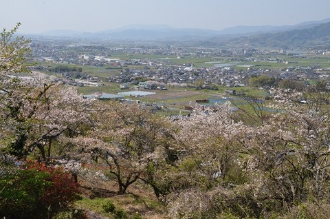 浮羽稲荷神社20200404No36
