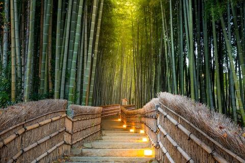 arashiyama-bamboo-grove