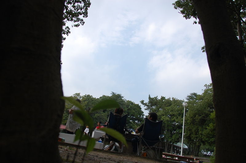 Dsc_0352