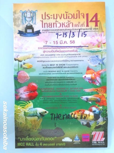 タイ熱帯魚コンクール