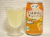 nippon-iyokan