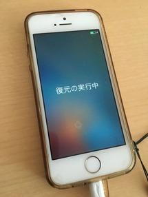 iPhone5s ����