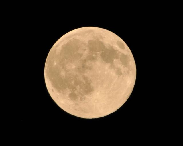 ゴールド月