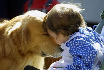 hund&baby
