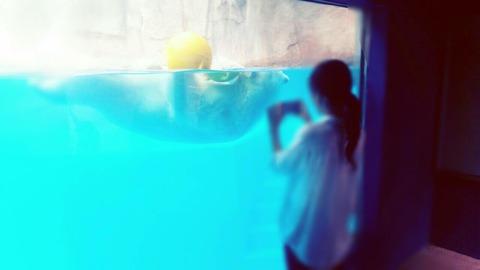 Point Blur_20151017_080127