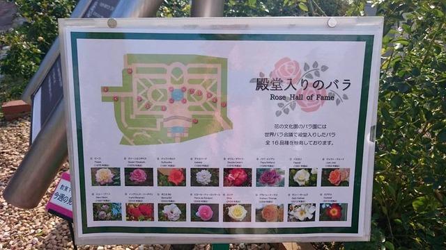「殿堂入りのバラ」案内板、花の文化園