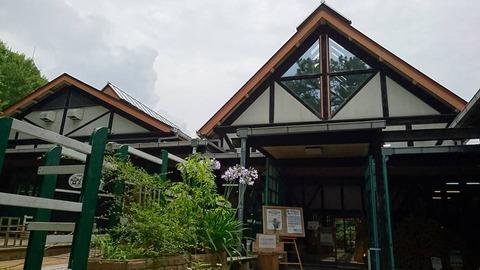 木根館の入口