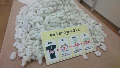 着物1着を作るのに必要な綿(コットンボール3kg分)