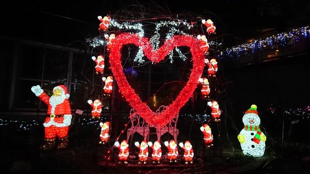 クリスマスのハートの撮影スポット、花の文化園イルミネーション