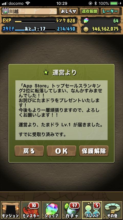 IMG_3706 2