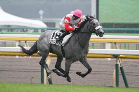 1 競馬 ダノンプラチナ