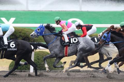 1 競馬 テイエムジンソク