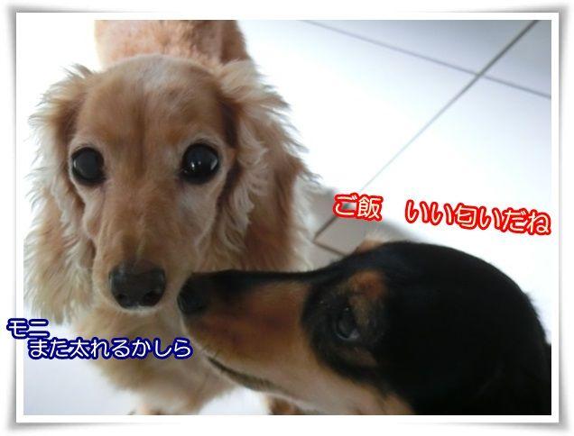 15_20141015044348e6c.jpg