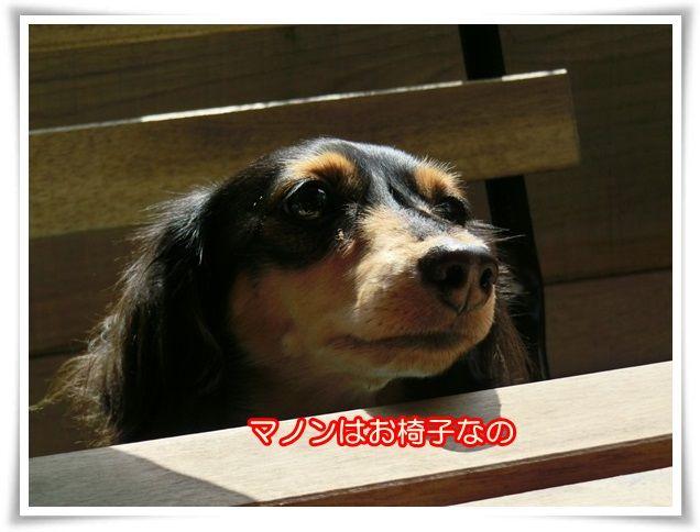 4_2014102523014571d.jpg