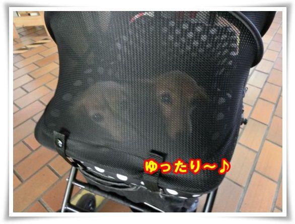 2_20130921082803d8b.jpg