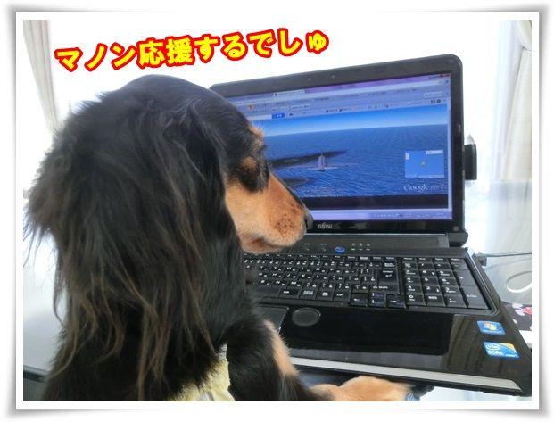 10_20130930122356072.jpg