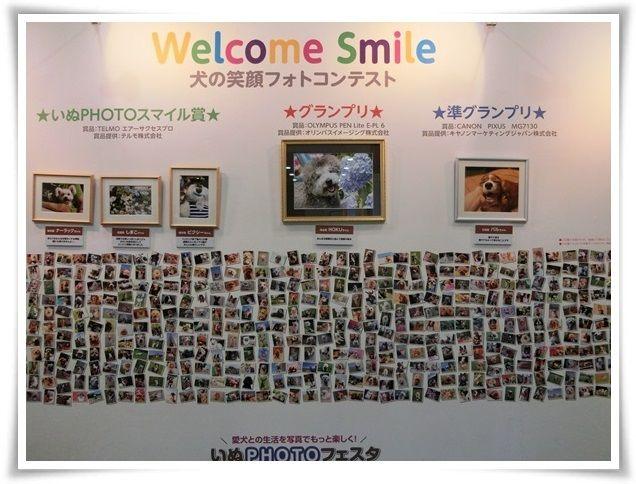 CIMG3658-20140726-20140727.jpg