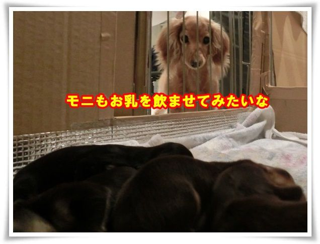 10_20131231103040216.jpg
