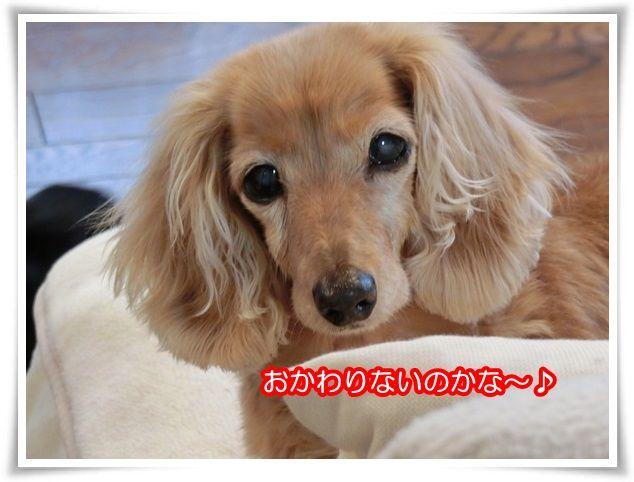 4_20150420195722cde.jpg