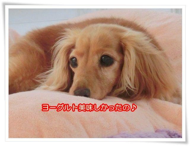 10_20140518083112628.jpg