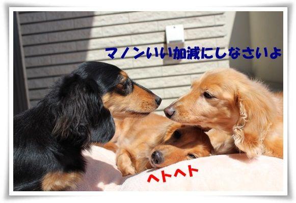 IMG_6.jpg