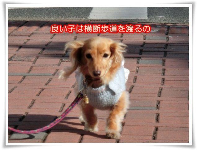 10_2014011121123059e.jpg