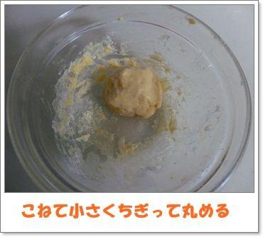 CIMG0501-20130208.jpg