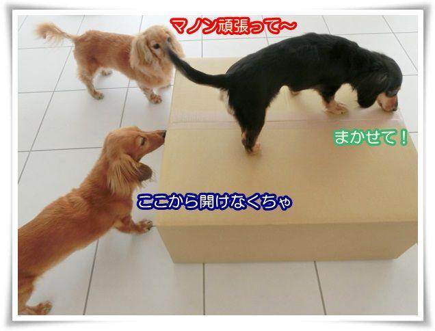 3_20140522073513ca5.jpg