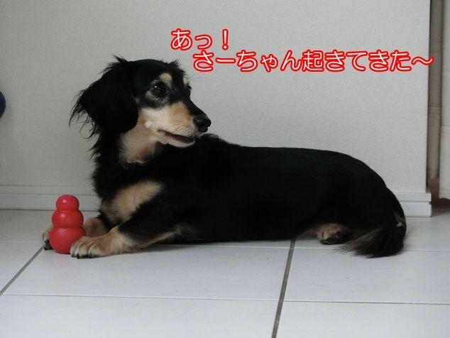 CIMG0846