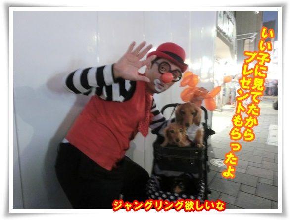 10_201309151041231ce.jpg