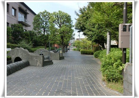 CIMG4761-20121017.jpg