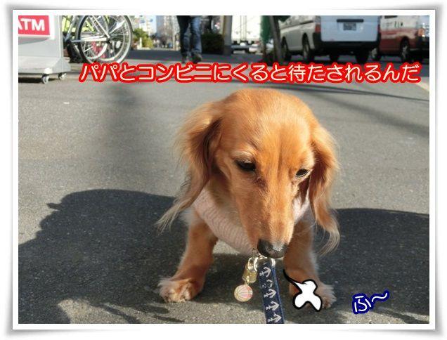 12_20140111212724cce.jpg