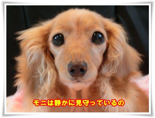 3_201312220950022e8.jpg