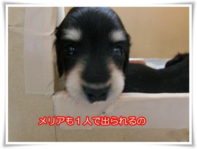 7_20140125100723866.jpg