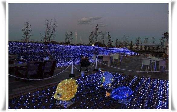 IMG_4496-20121212.jpg