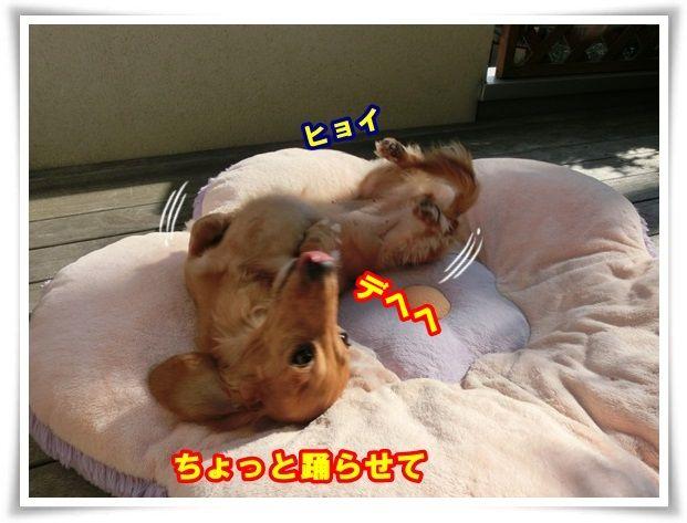 3_201310291147170ed.jpg