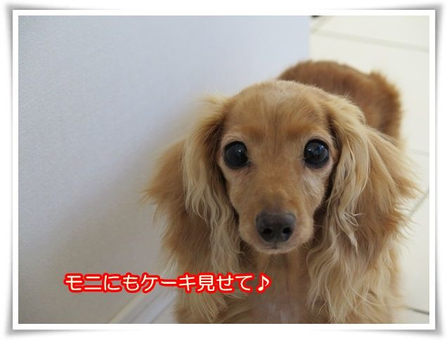 3_2014021810111948a.jpg