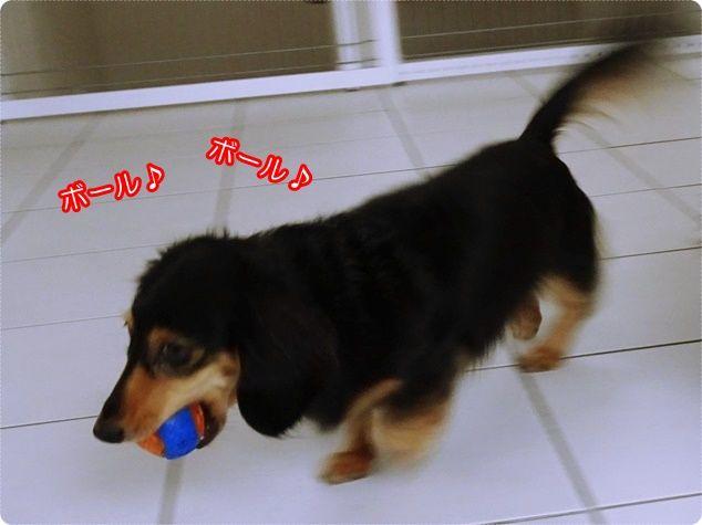 6_Fotor
