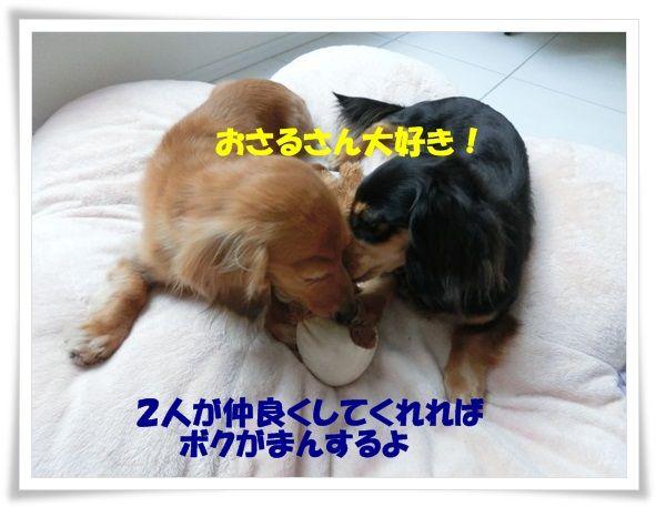 9_20130627130559.jpg